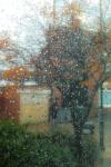 rain231oct13