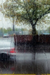 rain251oct13