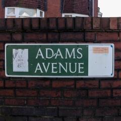 adams1