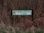 hollywall1