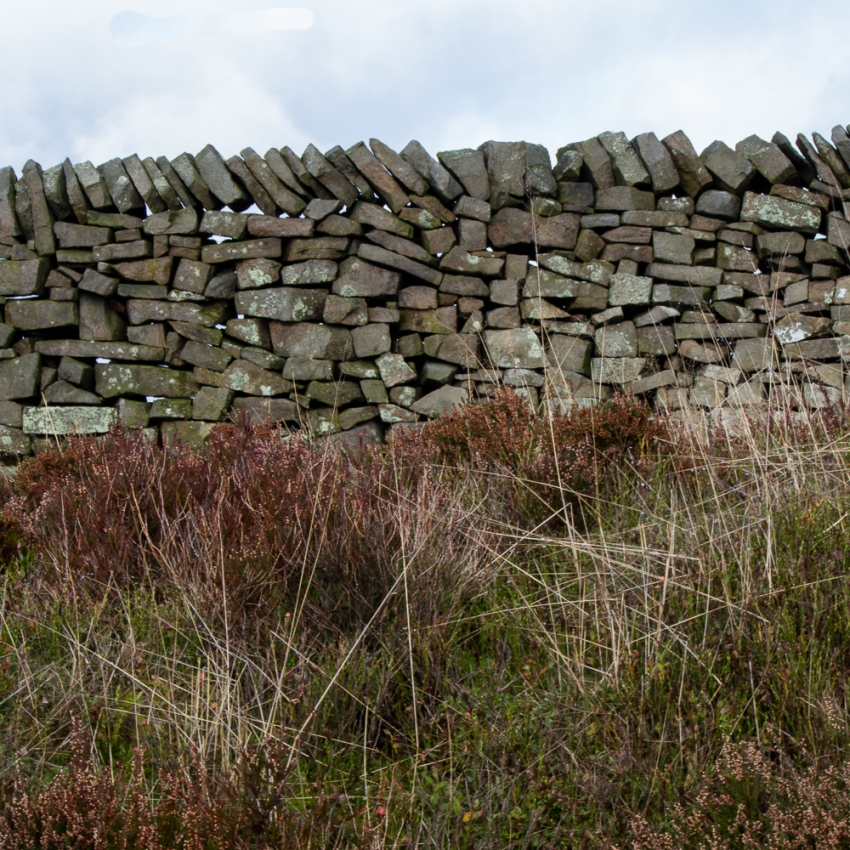 drystone1