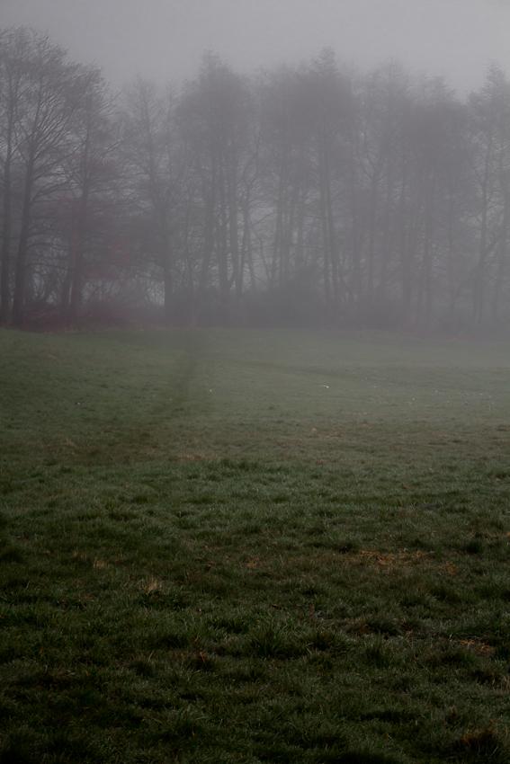 misty1