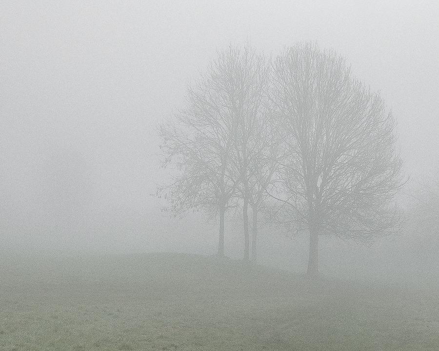 misty1103162