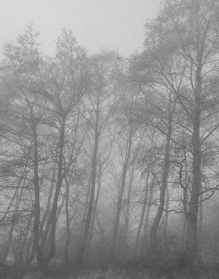 misty1103163