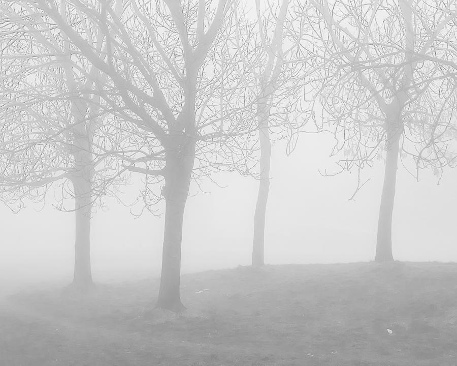 misty1103164